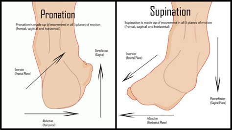 PRONATION VS. SUPINATION - Shoes Review and Buying Guides
